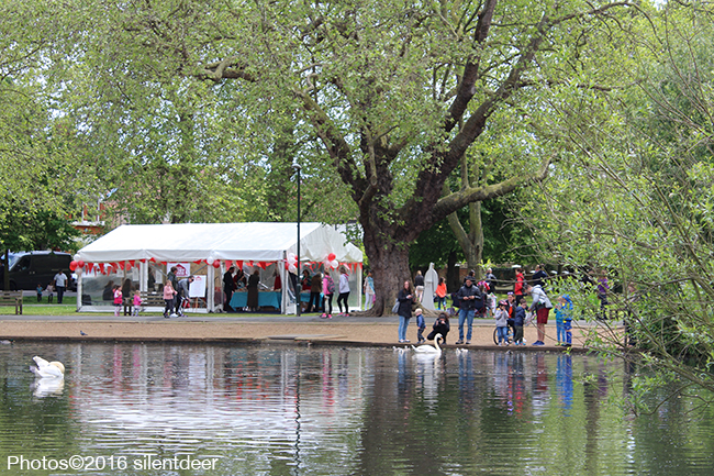 barnes festival by the pond
